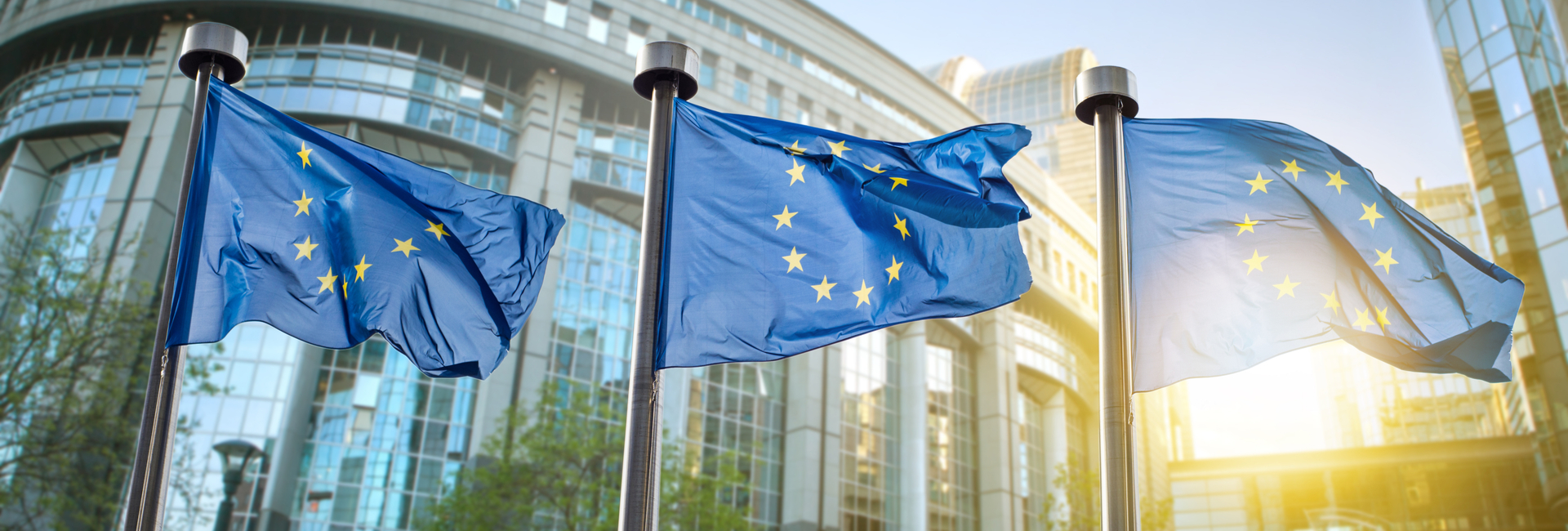 three European Union flags outside of the European Parliament in Brussels